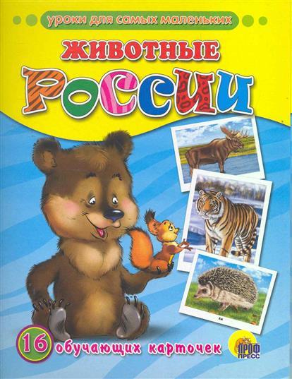 Животные России книги издательство сзкэо биэ животные россии
