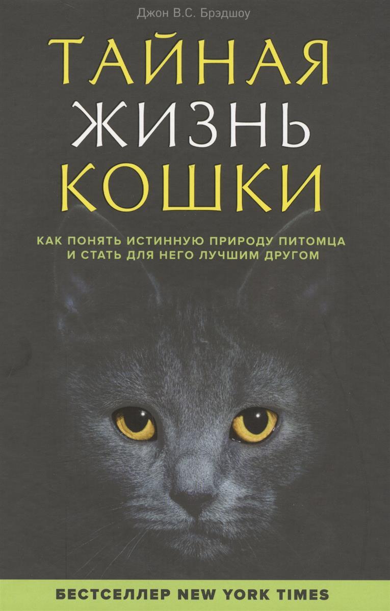 Тайная жизни кошки. Как понять истинную природу питомца и стать для него лучшим другом