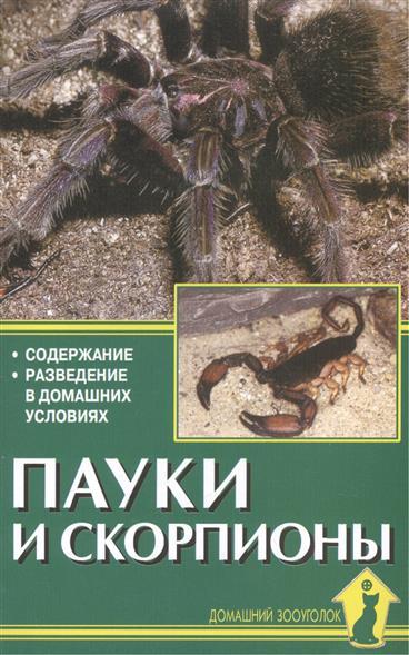 Пауки и скорпионы