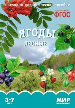 Минишева Т. Ягоды лесные. Наглядно-дидактическое пособие минишева т ягоды лесные наглядно дидактическое пособие