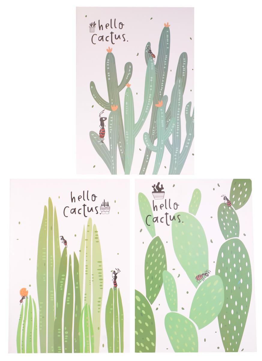 """Тетрадь В5 36 линейка """"Hello Cactus"""""""