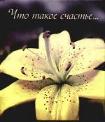 Что такое счастье... clever что такое счастье