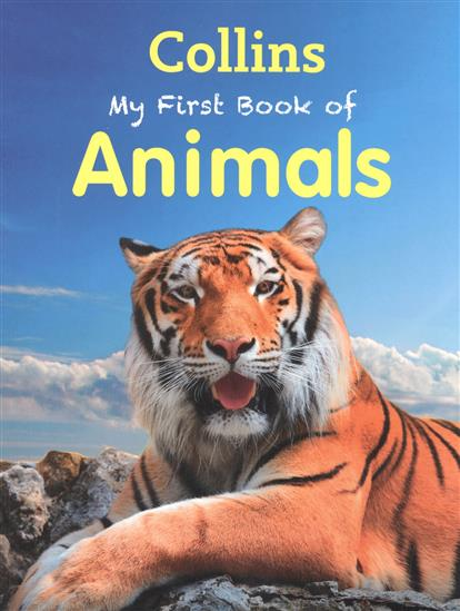 Morgan S. My First Book Of Animals my first abc sticker activity book