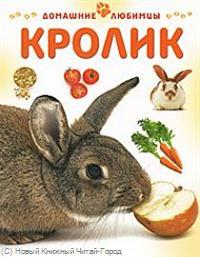 Рейнер М. Кролик ISBN: 9785944641793 рейнер м крыса