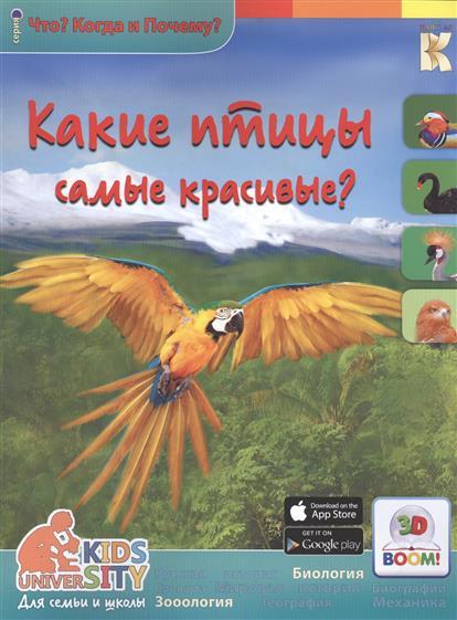 Владимиров В. 3D Boom. Какие птицы самые красивые? владимиров в 3d boom какие птицы самые красивые