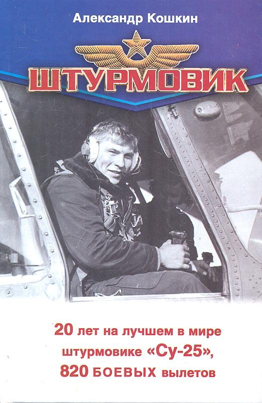 Кошкин А., Зубарев Е. Штурмовик