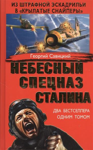 Небесный спецназ Сталина. Из штрафной эскадрильи в