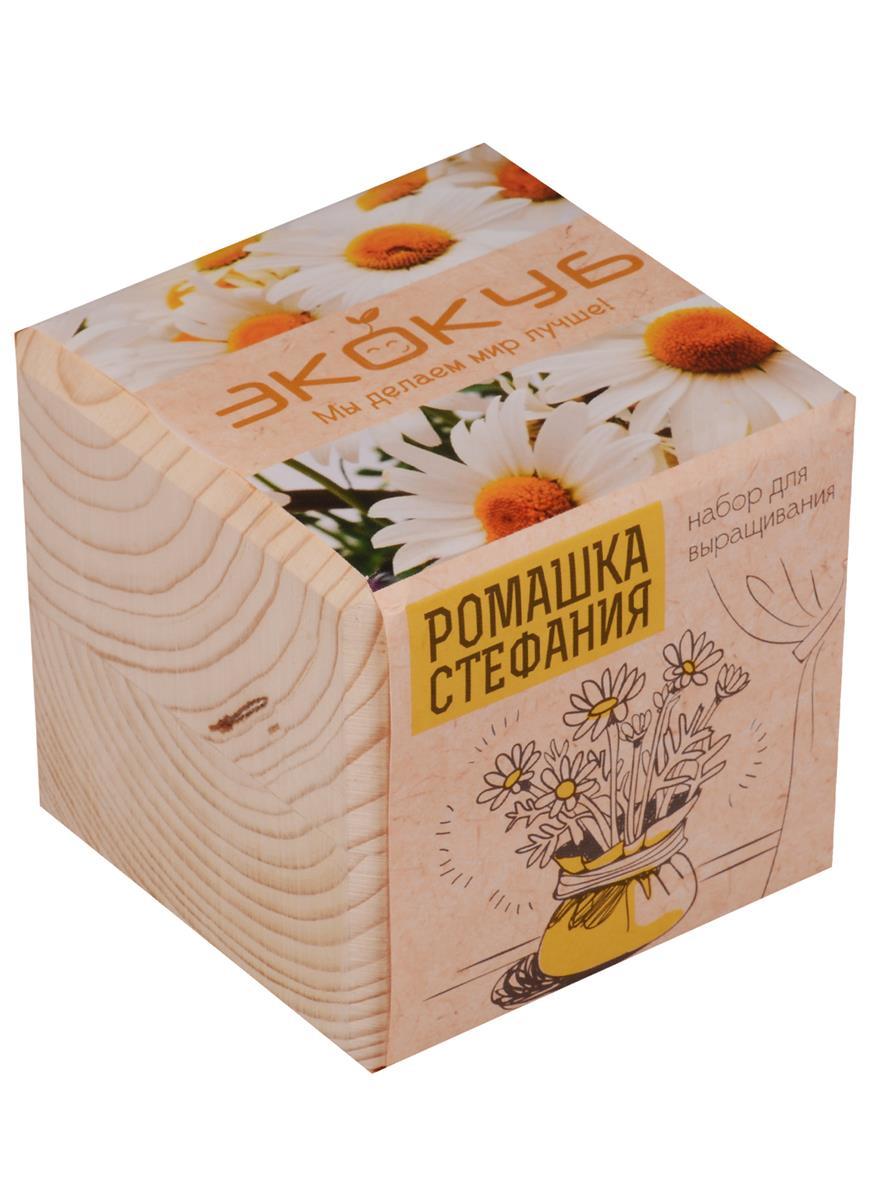 Набор для выращивания Экокуб Ромашка Стефания
