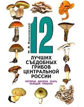 12 лучших съедобных грибов Центральной России