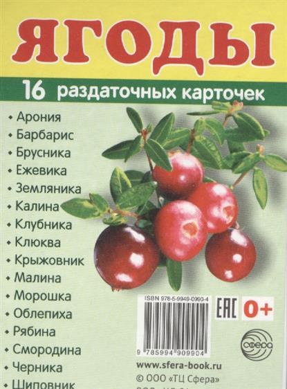 Ягоды (16 раздаточных карточек)