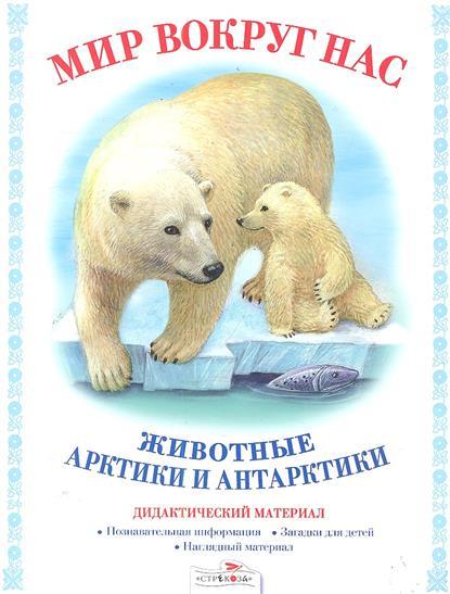 Животные Арктики и Антарктики Дидактический материал