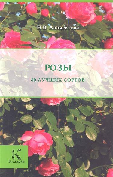 Анзигитова Н. Розы