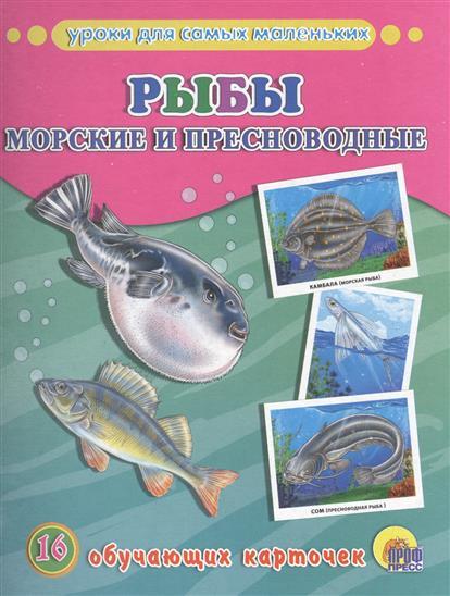 Рыбы морские и пресноводные. 16 обучающих карточек глушенков о пресноводные рыбы