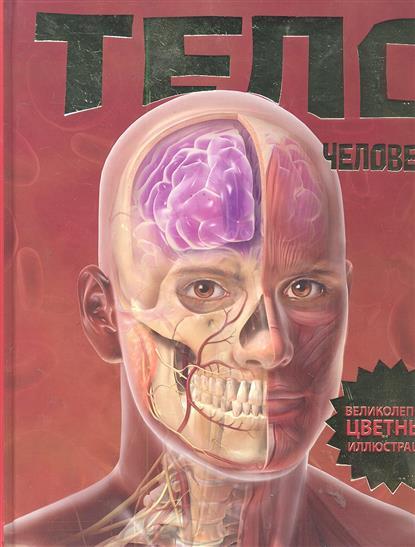 Калабрези Л. Тело человека шу л радуга м энергетическое строение человека загадки человека сверхвозможности человека комплект из 3 книг