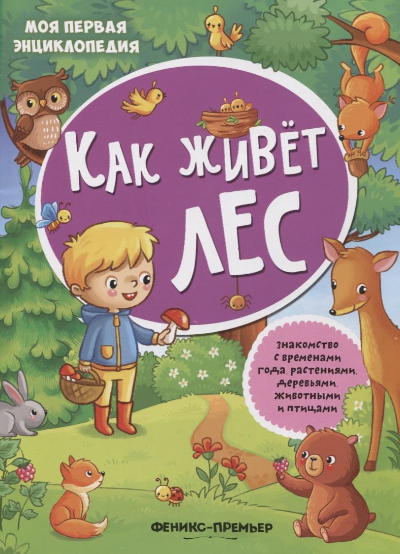Силенко Е. (отв. Ред.) Как живет лес. Книжка с наклейками силенко е отв ред жизнь в деревне книжка с наклейками