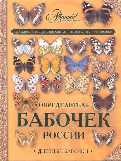 Определитель бабочек России. Дневные бабочки