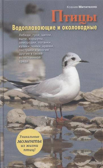 Птицы. Водоплавающие и околоводные. Иллюстрированная энциклопедия