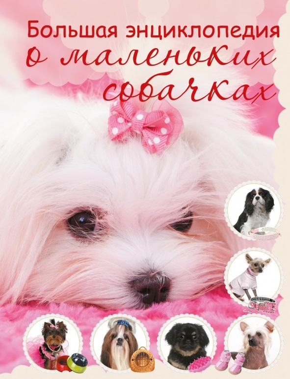 Вайткене Л. Большая энциклопедия о маленьких собачках вайткене л большая книга о науке для мальчиков