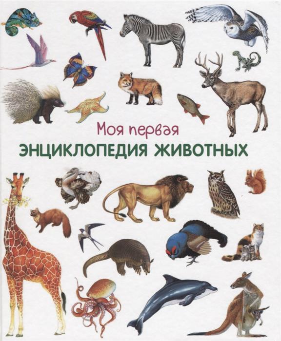 Шестакова И. (отв. ред.) Моя первая энциклопедия животных гальперштейн л моя первая энциклопедия