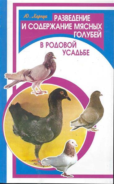 Разведение и содержание мясных голубей в родовой усадьбе
