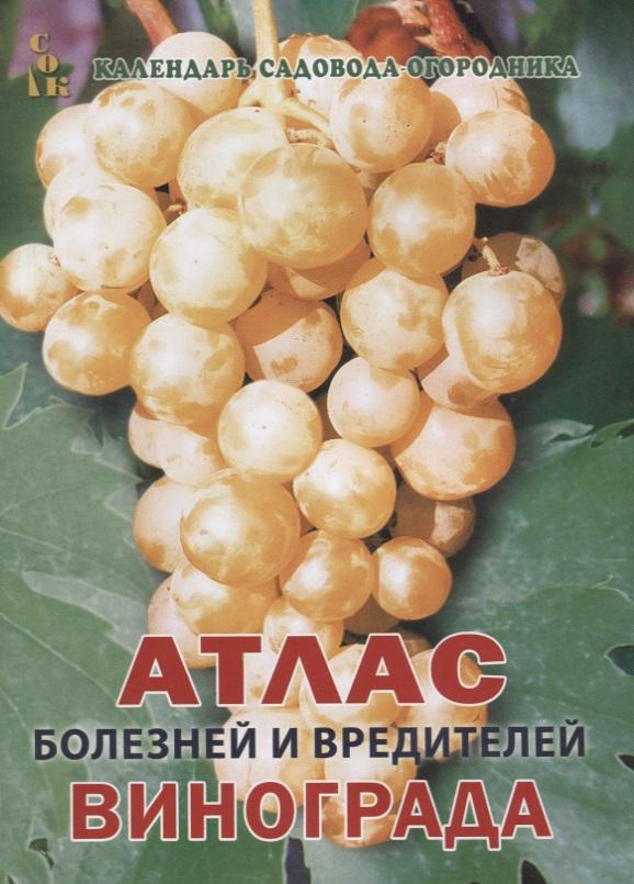 Книга Атлас болезней и вредителей винограда. Мовсесян Л.