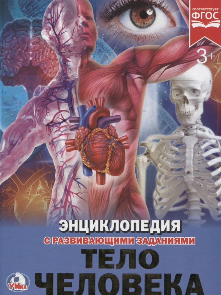 Волцит П. Тело человека