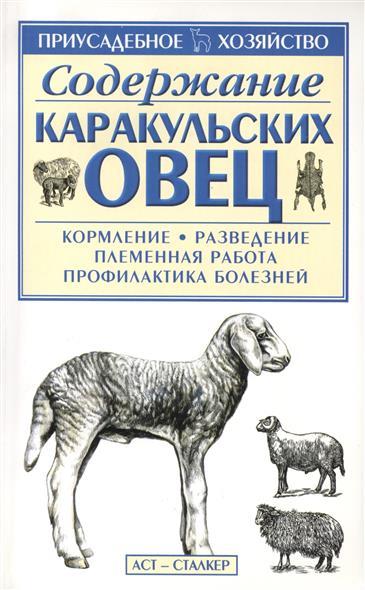 Содержание каракульских овец