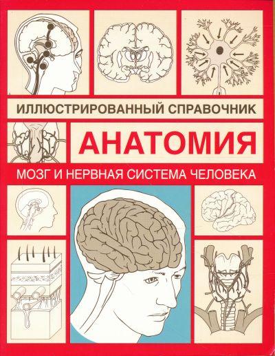 Мозг и нервная система человека Илл. справочник