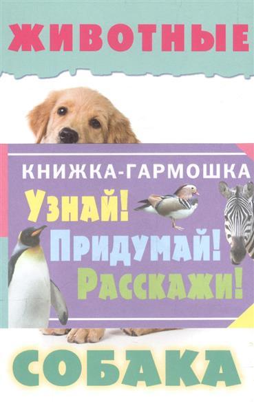 Узнай! Придумай! Расскажи! Животные