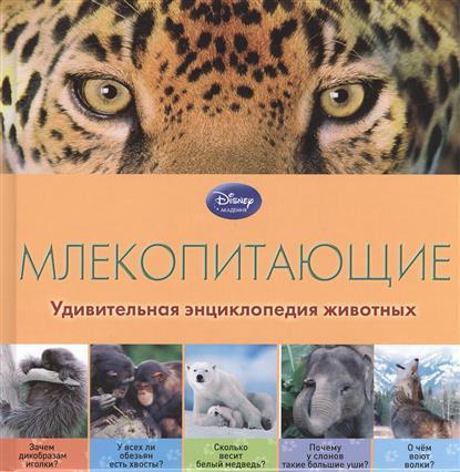 Жилинская А. (ред.) Млекопитающие жилинская а ред азбука