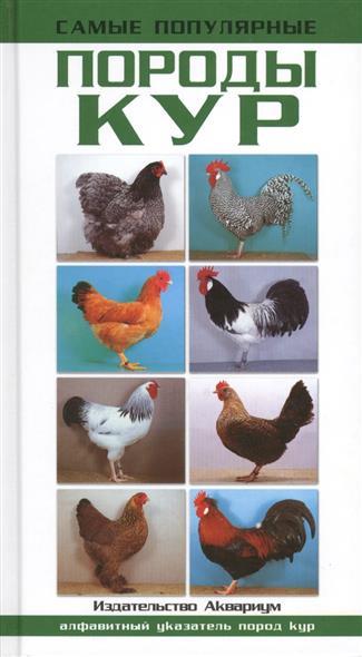 Самые популярные породы кур