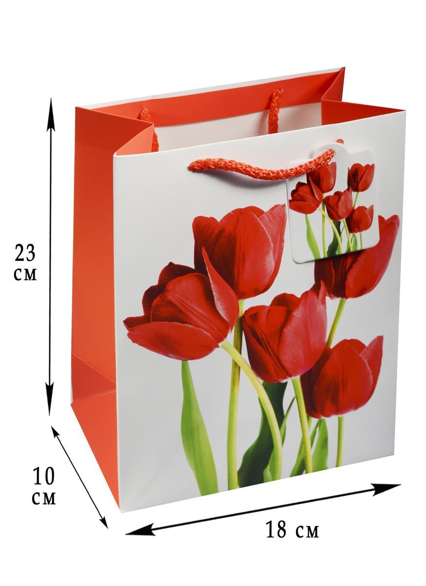 """Пакет подарочный бумажный А5 """"Яркие тюльпаны"""""""