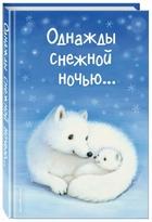 Однажды снежной ночью…