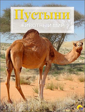 Гришечко Е. (пер.) Пустыни и кустарниковые местности