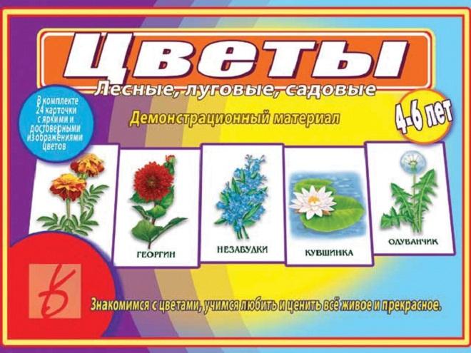 Цветы. Лесные, луговые, садовые. 4-6 лет. Демонстрационный материал луч трафарет прорезной цветы садовые цвет синий