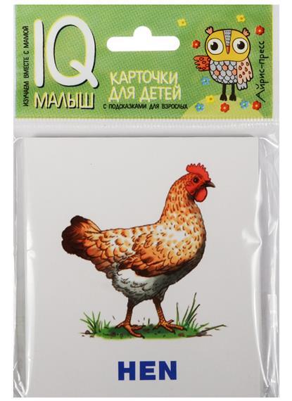 Животные фермы. Farm Animals. Карточки для детей с подсказками для взрослых