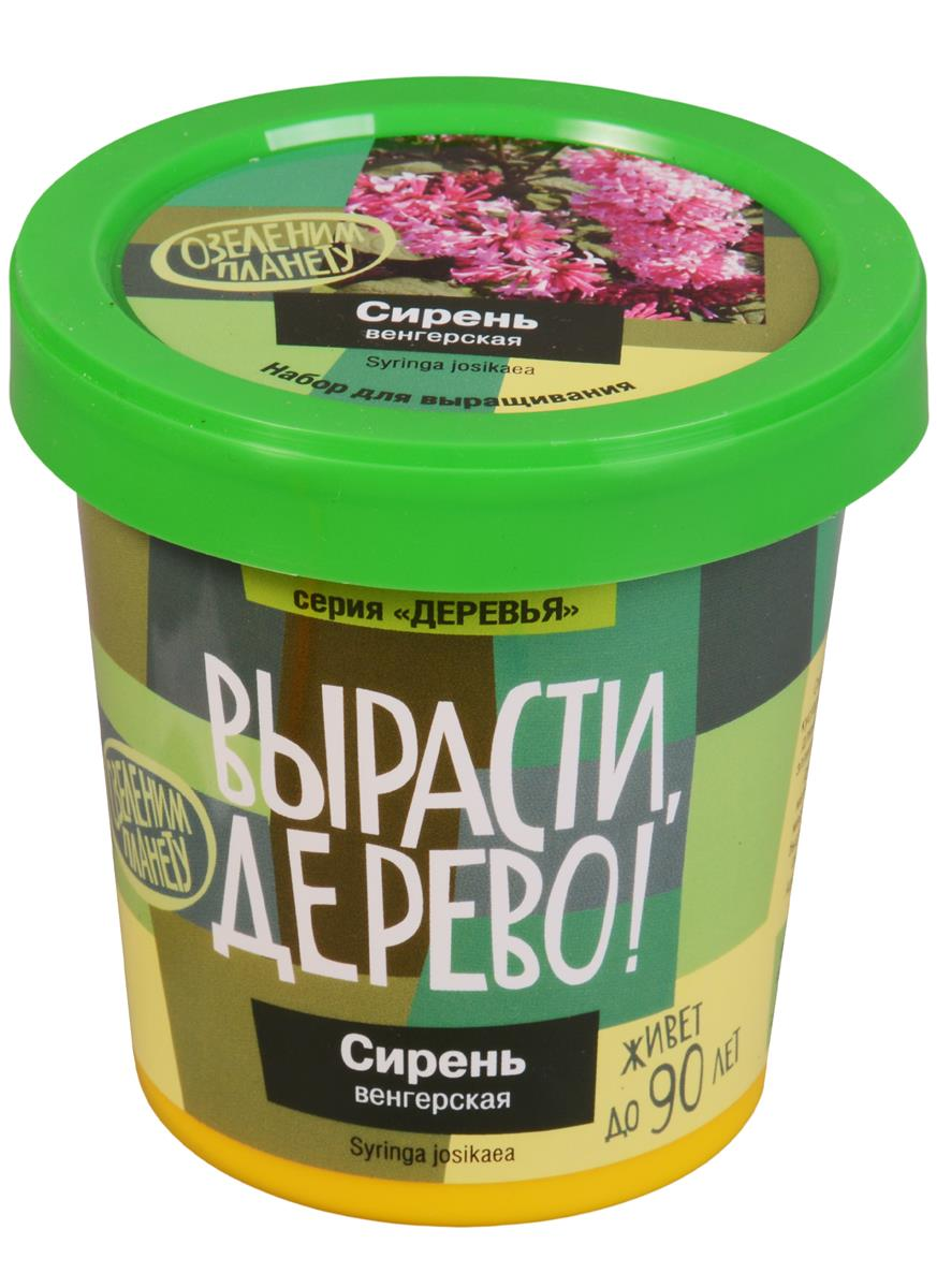 Набор для выращивания Сирень венгерская (zk-053)