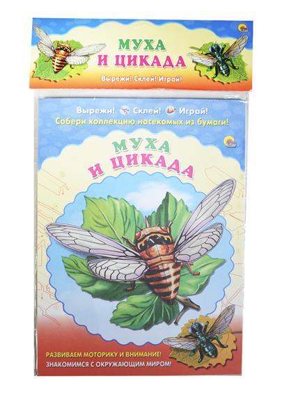 Муха и цикада