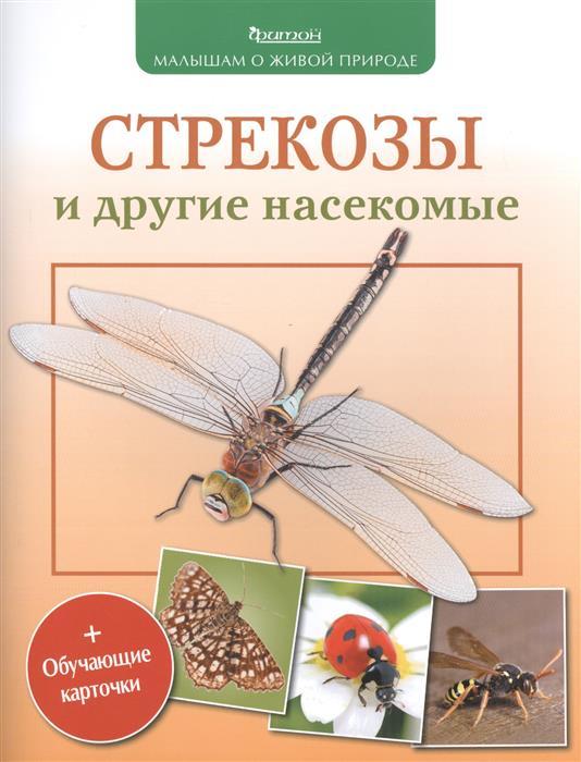 Волцит П. Стрекозы и другие насекомые п м волцит растения