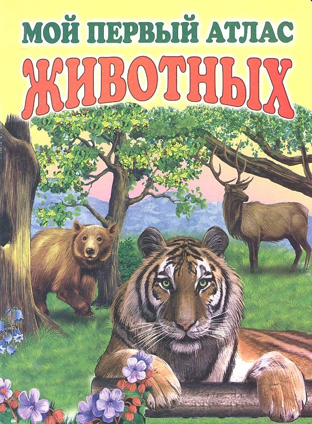 Меркулова С. (ред.) Мой первый атлас животных барсотти и мой первый атлас мира