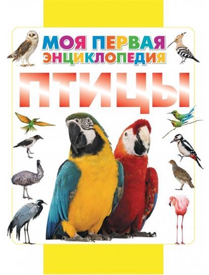 Кошевар Д. Птицы