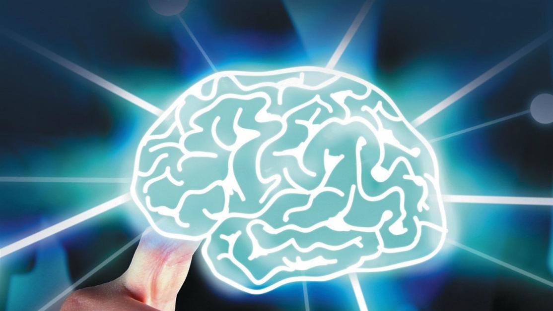 c24f6f2f0f45 Не знаете, что почитать  Посмотрите подборку «Мозг и память»